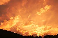 Cielo arancio sopra la linea di albero fotografia stock libera da diritti