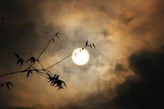 Cielo asustadizo Imagenes de archivo