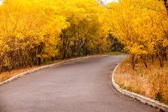 Cielo aumentante di bello Sun con Asphalt Highways Road immagine stock libera da diritti