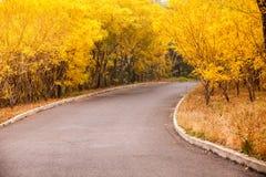 Cielo aumentante di bello Sun con Asphalt Highways Road immagine stock