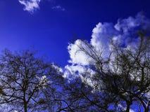 Cielo azul Imagen de archivo libre de regalías