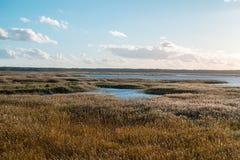 Cielo azul Autumn Time Sunlight del paisaje del lago fotos de archivo libres de regalías