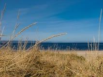 Cielo azul brillante sobre una playa escocesa imagen de archivo
