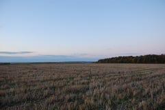 Cielo azul, campo, bosque Imagenes de archivo