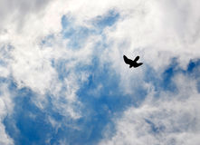 Cielo azul con el fondo de las nubes Fotografía de archivo libre de regalías