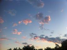 Cielo azul con muchas nubes rosadas Imágenes de archivo libres de regalías