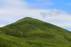 Cielo azul de la montaña y valle verde Foto de archivo libre de regalías