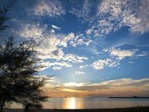 Cielo azul de la silueta del árbol Fotos de archivo