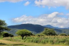 Cielo azul de las colinas verdes Imágenes de archivo libres de regalías