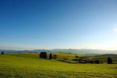 Cielo azul de los prados verdes Fotos de archivo libres de regalías