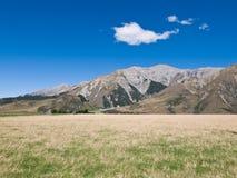 Cielo azul del paisaje del verano imagen de archivo