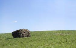 Cielo azul en la colina verde Hay Bales Foto de archivo
