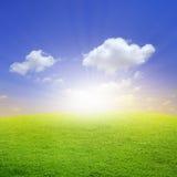 Cielo azul hermoso del ingenio verde del campo Imágenes de archivo libres de regalías