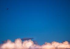 Cielo azul, nubes blancas, barbas que vuelan Fotos de archivo