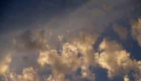 Cielo azul, nubes y ramas Fotografía de archivo libre de regalías