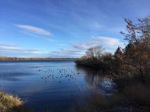 Cielo azul, río azul, el río Columbia, Washington Fotos de archivo libres de regalías