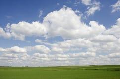 Cielo azul sobre el campo de la violación Fotos de archivo libres de regalías