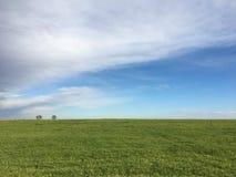 Cielo azul sobre prado Fotografía de archivo