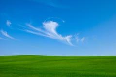Cielo azul y campo Foto de archivo