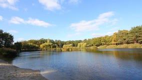 Cielo azul y lago reservado el día soleado en el parque almacen de metraje de vídeo