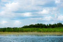 Cielo azul y nubes blancas, bosque verde y aguas azules del río Foto de archivo