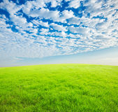 Cielo azul y nubes e hierba blancas Fotografía de archivo libre de regalías
