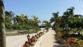 Cielo blu alla spiaggia di Varadero - Cuba Fotografia Stock