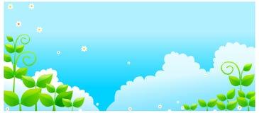Cielo blu con i fogli verdi Immagine Stock