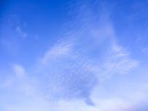 Cielo blu con la nube bianca Immagine Stock