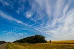 Cielo blu con le tracce di aerei Fotografie Stock Libere da Diritti