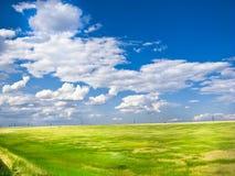 Cielo blu del giacimento di grano Immagini Stock