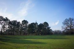 Cielo blu della regolazione del parco Fotografie Stock Libere da Diritti