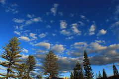 Cielo blu di inverno Immagine Stock