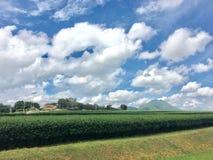 Cielo blu di vista fotografie stock libere da diritti