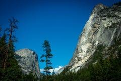Cielo blu di Yosemite Fotografie Stock Libere da Diritti