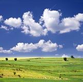 Cielo blu e campo verde Immagini Stock Libere da Diritti