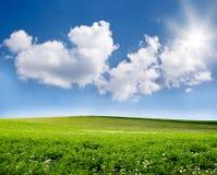Cielo blu e campo verde Fotografia Stock