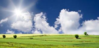 Cielo blu e campo verde Fotografia Stock Libera da Diritti