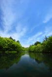 Cielo blu e stagno immagini stock