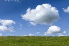 Cielo blu ed erba verde Immagine Stock Libera da Diritti