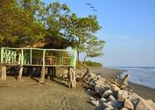 Cielo blu ed uccelli della spiaggia dell'oceano di Pasific Fotografie Stock Libere da Diritti