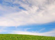 Cielo blu, erba verde Immagine Stock
