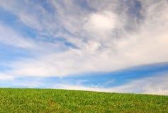 Cielo blu, erba verde Fotografia Stock Libera da Diritti