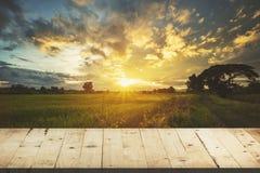 Cielo blu la tavola e del giacimento e del tramonto di legno del riso con la lente si svasano, d Fotografia Stock Libera da Diritti