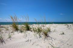 Cielo blu, mare e sabbia sulla spiaggia abbandonata Fotografie Stock Libere da Diritti