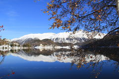 Cielo blu, montagna bianca, lago e l'albero appassito Immagine Stock