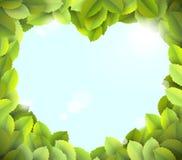 Cielo blu nel telaio del cuore dai fogli verdi Immagini Stock Libere da Diritti