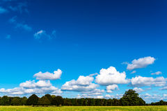 Cielo blu, nuvole, alberi ed erba vicino al bagno Immagine Stock