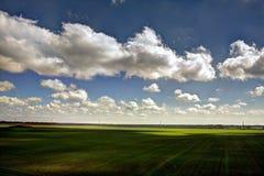 cielo blu scuro e campo giallo di autunno Fotografia Stock Libera da Diritti