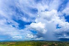 Cielo blu selvaggio sopra gli alberi gialli di verde del campo tutto lo sguardo come paesaggio variopinto, paesaggio della radura Fotografia Stock